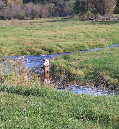 Vernon County Trout Stream